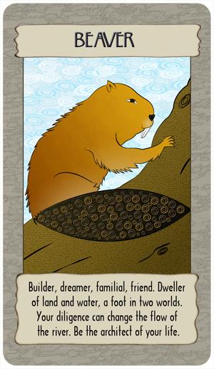 beaver_round.jpg