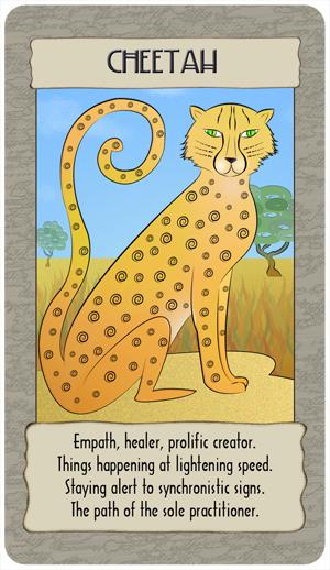 cheetah_GC copy.jpg